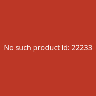 Lord of the Rings - Fellowship of the Ring Gandalf Starter Deck - Spanish