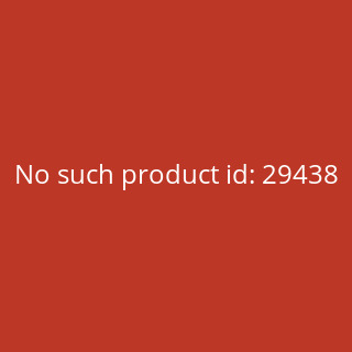 Trounce-O-Matic - Japanese Theme Deck - Odyssey Themendeck Preconstructed
