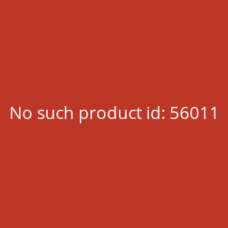 Shadows of Brimstone: Flesh Stalker and Flesh Drones - English